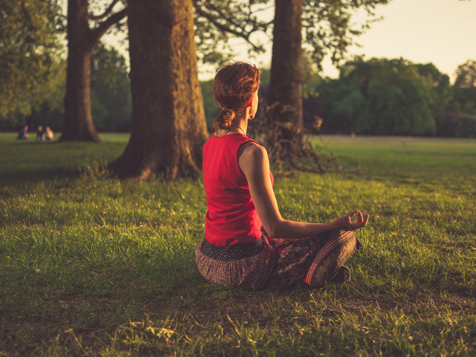 Learn the Different Types of Meditation and How They Help You